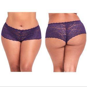 NWT Torrid Purple Lace Cheeky Panty Size 1X